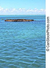 isla contoy mexico froath sea drop wave - blue isla contoy...