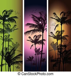 Palm trees at sunset. - Palm trees at tropical sunset banner...