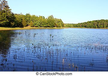 Tishomingo State Park - Mississippi - Haynes Lake at...