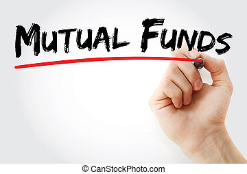 mutual fund essay