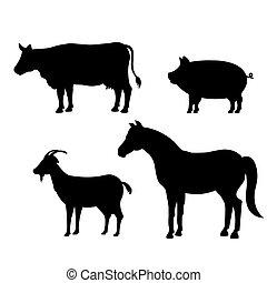 animals farm domestic icon