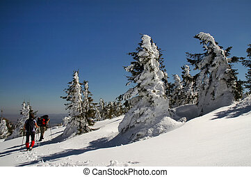 vacker,  Mountains, Vinter, Vandring, folk