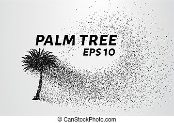 The palm of the particles. Palma crumbles into small circles...
