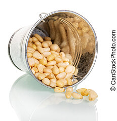 Pine nuts redischarge from overturned bucket isolated on...