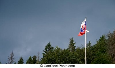 Slovak flag in the wind