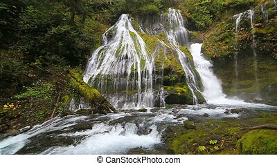 Impressive Panther Creek Falls with plunging water audio in...