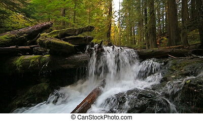 Panther Creek Falls with plunging water audio sounds in WA State
