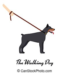 Doberman Pinscher with a leash - on white background. Vector...