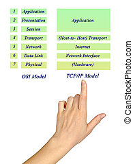 OSI Reference Model and TCP/IP Model Layers