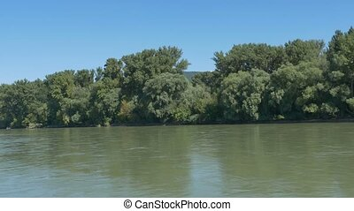 Forests on the Banks of Danube in Slovakia - Green water and...