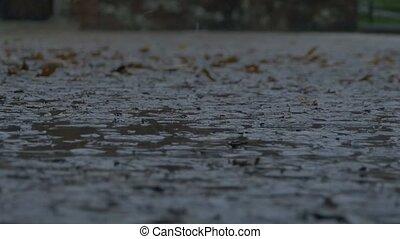 Raining on Muddy Pavement