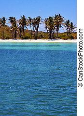 coastline and of isla contoy mexico - coastline and rock in...