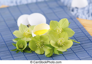 Easter decoration with egg shell and hellebore flower on a...