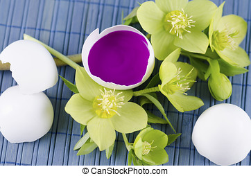Easter decoration with hellebore and egg shell with magenta...