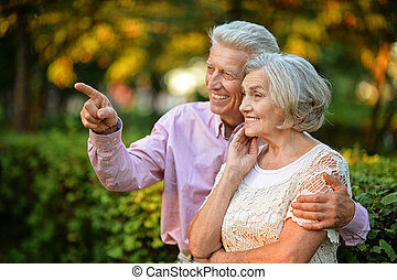 portrait of senior couple - portrait of beautiful caucasian...