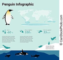 Penguins infographic. Emperor penguin. Flat design element....