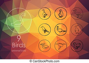 Set of birds icons - birds modern icons for mobile interface...