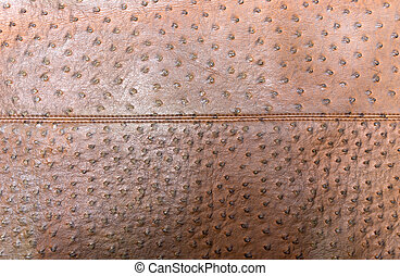 Genuine leather textured of ostrich skin with seam