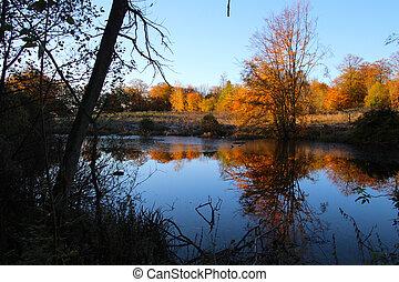Autumn color mirroring