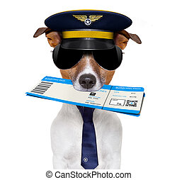 airline pilot flight attendant check in ticket - jack...