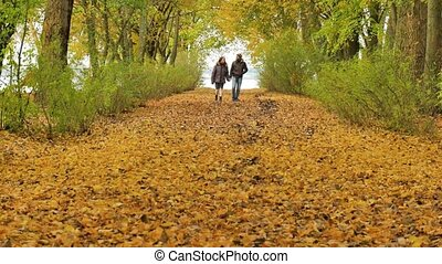 young model couple in love - autumn park nature - couple man...