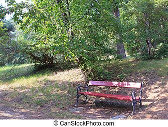 Ostrya carpinifolia, the European hop-hornbeam is tree in...