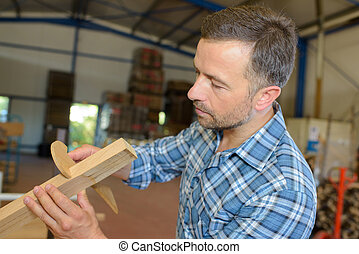 lavoro, carpentiere