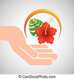 hand hold beautiful flower red lily