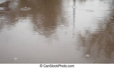 raindrops in a puddle of water splash autumn blue nature overcast gloomily