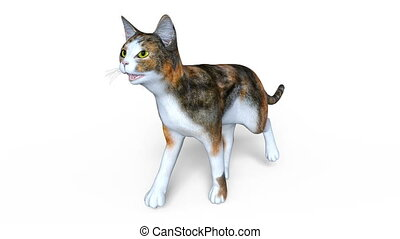 Walking cat - 3D CG rendering of a walking cat