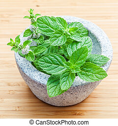 Closeup fresh peppermint leaves in the white mortar on...
