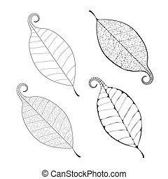 Beautiful Vector leaf isolated - Vector delicate macro leaf...
