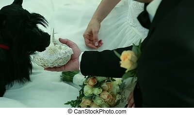 Scottish Terrier brought the wedding rings in a basket for the bride and groom