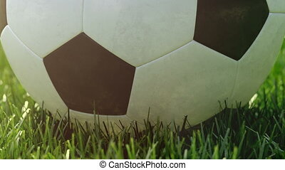 soccer ball movint to the center of camera view.