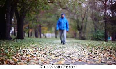 Senior man walking and relaxing in autumn park. 1920x1080....