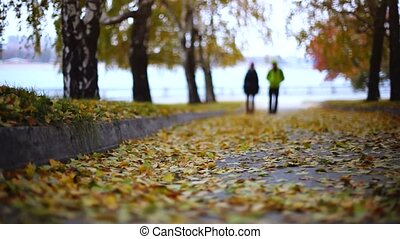 Blurred silhouette of couple in love in fallen leaves in autumn park. 1920x1080
