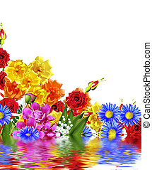 Bright spring flowers on a white background.