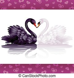 Two graceful swans in love: black and white heart