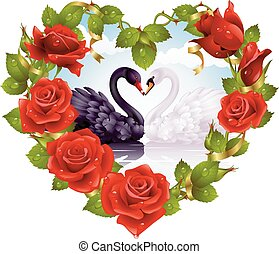 Red Rose frame in the shape of heart and couple swans