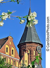 Tower Konigsberg Cathedral and Jasminel. Symbol of...