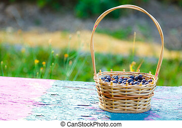 Wicker basket with dark gooseberry on bench