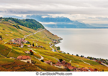 Vineyard terraces at Lake Geneva in autumn, Lavaux, Vaud,...