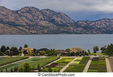Tree Nursery Overlooking Okanagan Lake Kelowna BC Canada -...