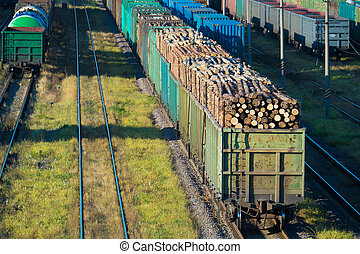 Train with logs at the railway station - cars with logs at...