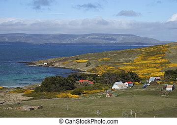 Carcass Island Settlement - Farm buildings at Carcass Island...