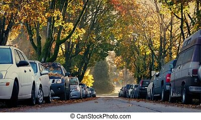 Tree-Lined Road With Passing Truck In Fall - Dolly shot of...