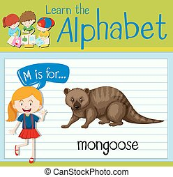 Flashcard letter M is for mongoose illustration