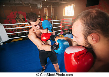 Boxer sents his opponent to the knockout. Fighting ring on...