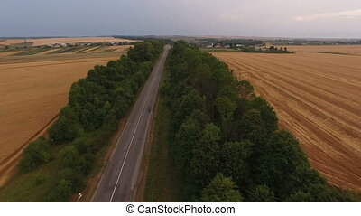 Aerial view of car moving on the road in forest between the wheat fields. 4K