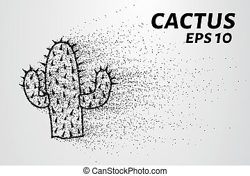 Cactus of the particles. Cactus consists of small circles...